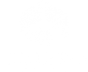 zulufish-logo